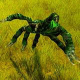 th_IN-HuntingSpider-champ.jpg