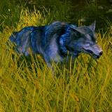 th_WA-AlphaWolf2-Champ.jpg