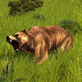 th_WA-Grizzly.jpg